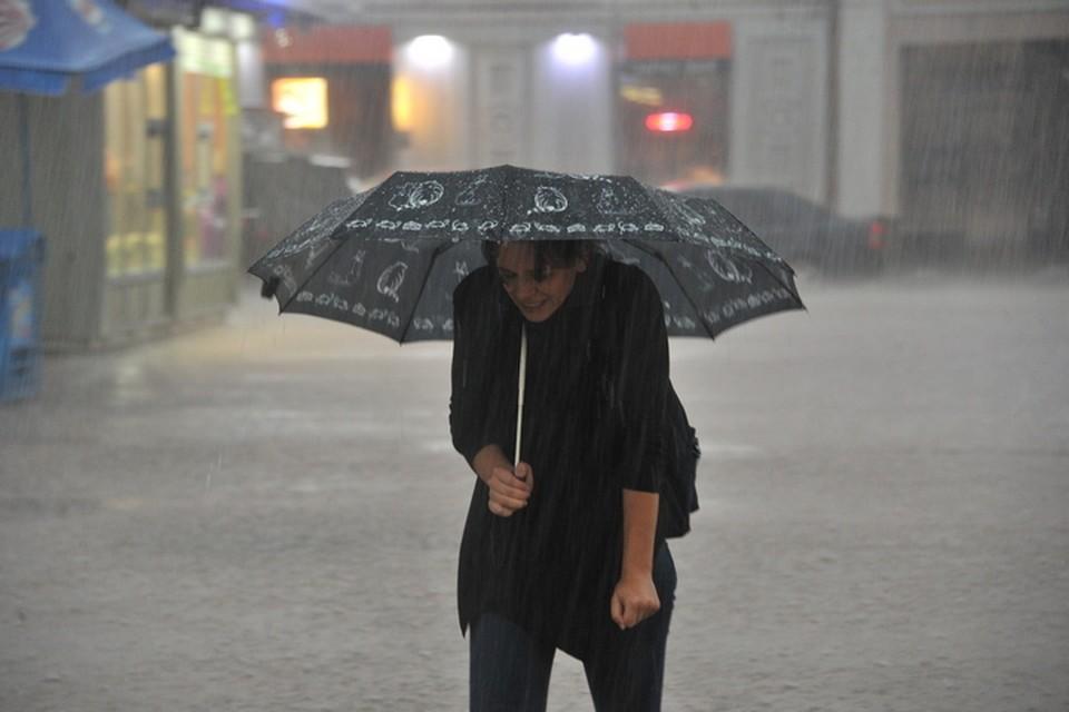 В Приморье ожидается дождь с сильным ветром.