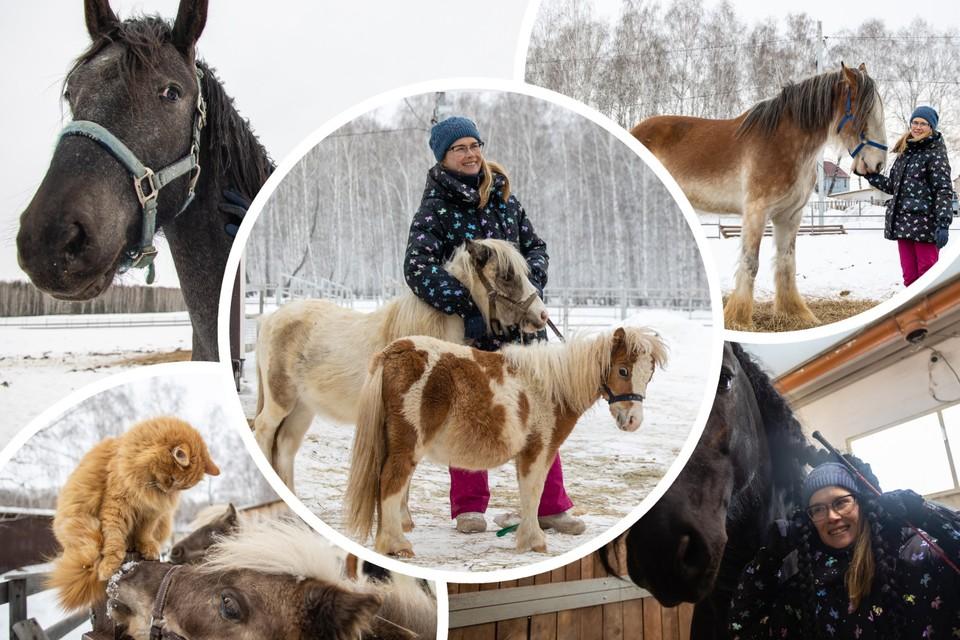 Татьяна Мустякимова разводит лошадей больше 10 лет.