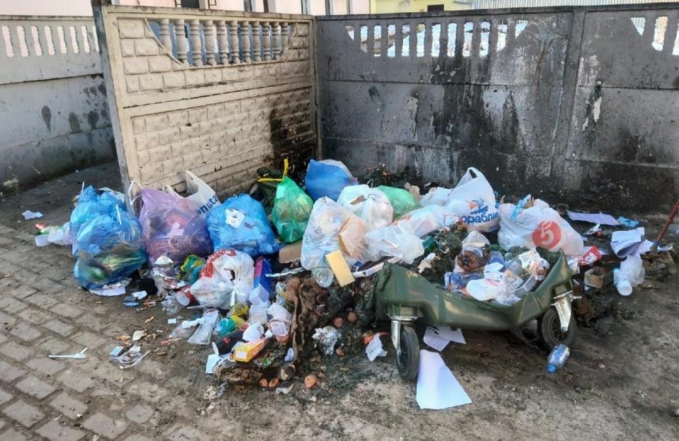 Самовозгорание мусора здесь практически исключено из-за ежедневного вывоза