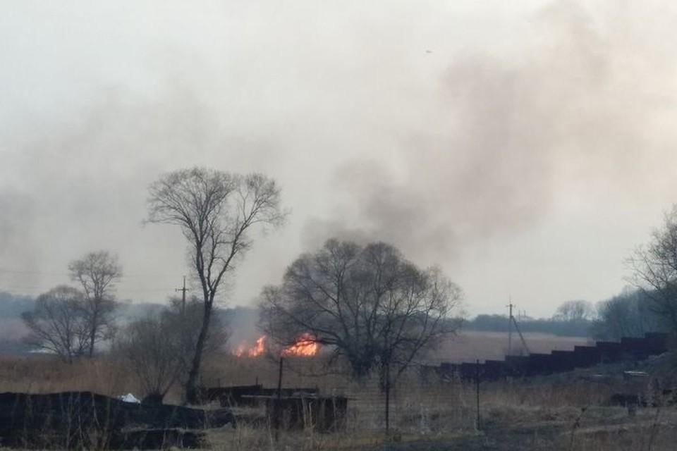 В Приморье из-за пала травы могут загореться дома