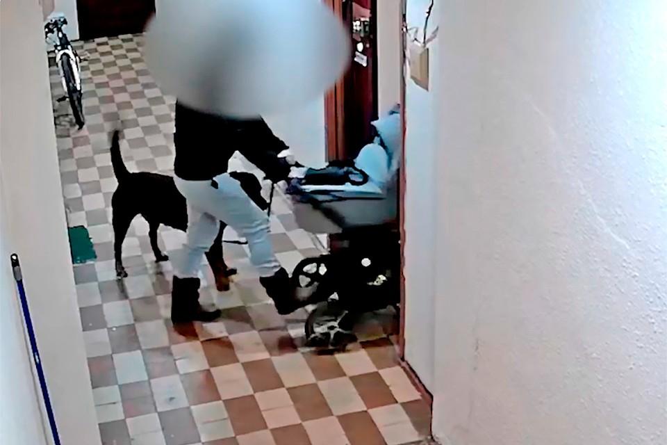 Молодой москвич жестоко обращается со своей собакой.