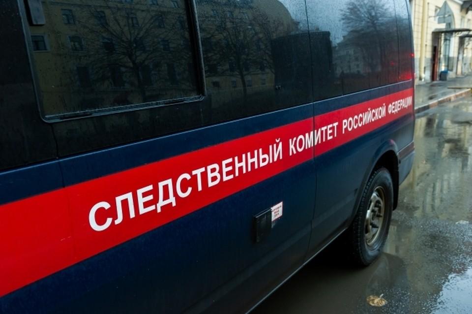 Следственный комитет РФ возбудил уголовное дело о смерти ребенка при обстреле в Донбассе