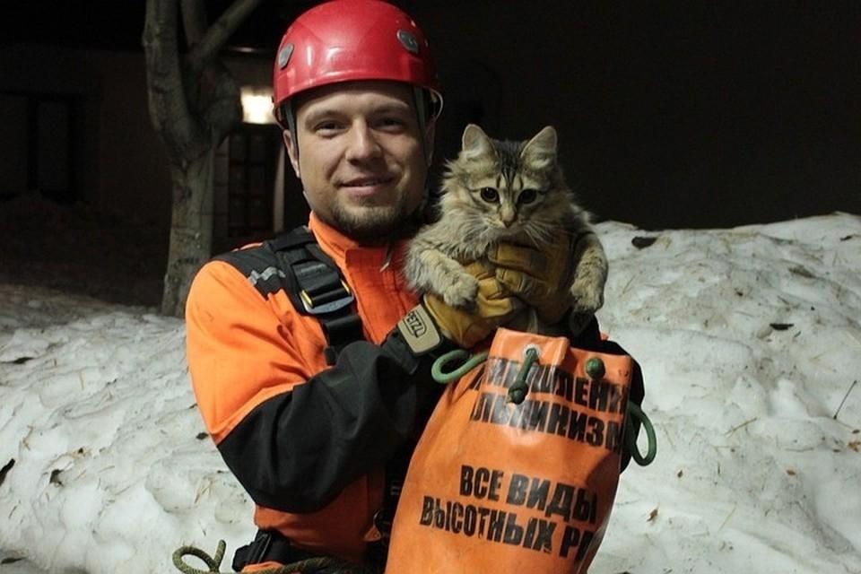 Илья спас немало животных, их хозяева ему благодарны