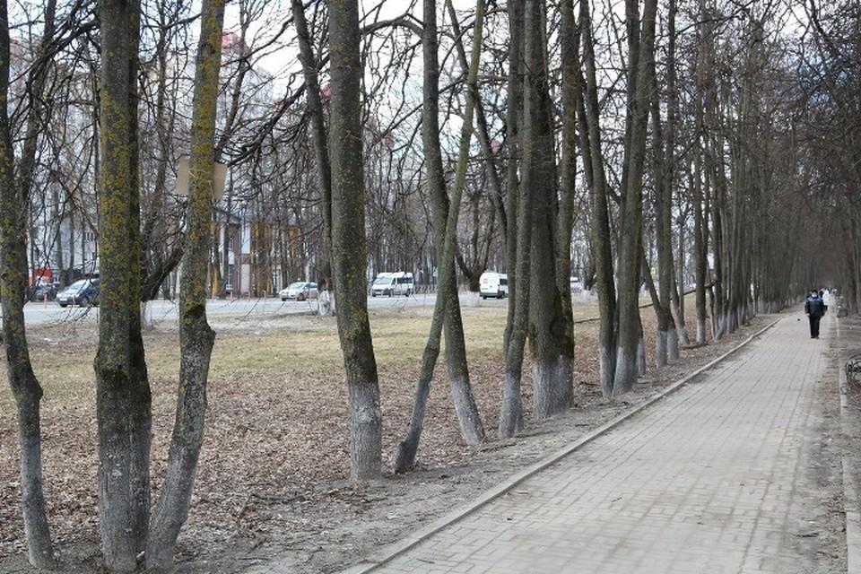 В Брянской области на час ночи 8 апреля 2021 года новые случаи коронавируса выявили в 19 городах и районах.