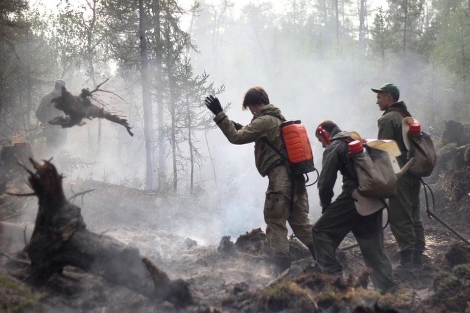 Во Владивостоке уже ввели особый противопожарный режим