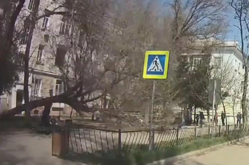 ЧП случилось 8 апреля, было штормовое предупреждение. Фото: скриншот из видео