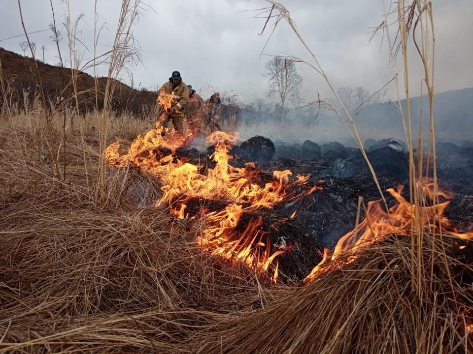 В 2021 году пожары охватили Архаринский район. Фото: Амурский центр ГЗ и ПБ