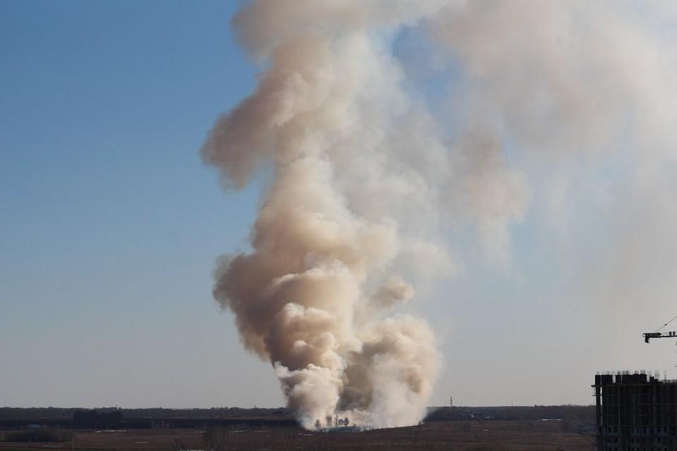 Появилось видео, как горит трава около дачных участков в Новосибирске. Фото: Евгений Макаров