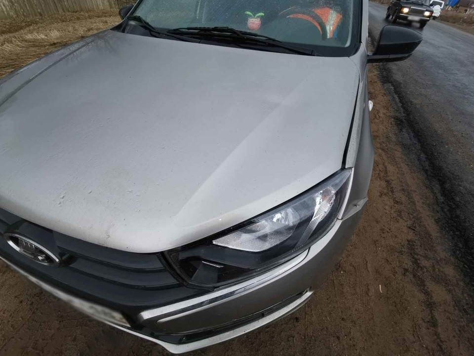 72-летний водитель «Лады Гранты» сбил маленькую девочку на трассе в Удмуртии