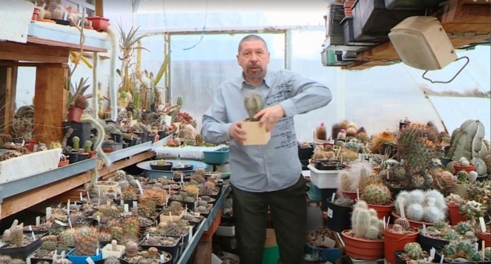 Коллекционер редких видов кактусов из Ижевска стал героем сюжета на Первом канале