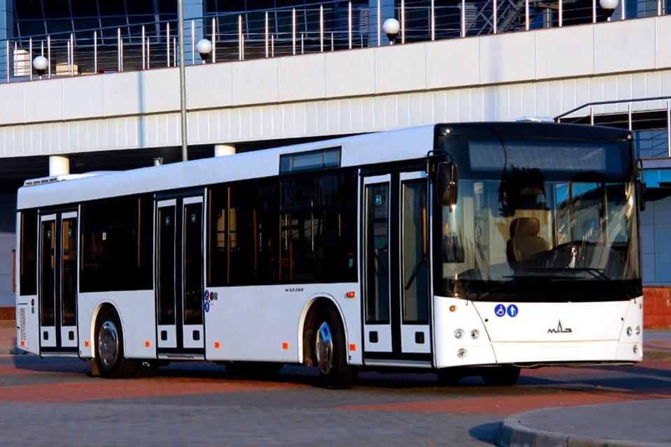 Претендент МАЗ признан победителем аукциона на закупку 100 новых автобусов с целью улучшения качества транспортных услуг в столице. Фото:ionceban.md