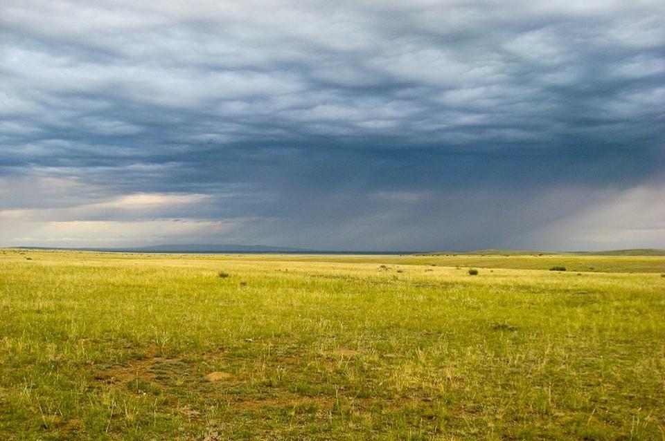 Земельный вопрос — он, пожалуй, один из самых животрепещущих для большинства казахстанцев.