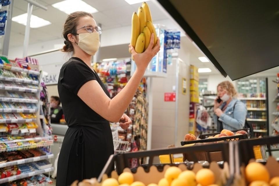 Живые мухи-горбатки из Эквадора были обнаружены в грузе бананов в порту Новороссийска