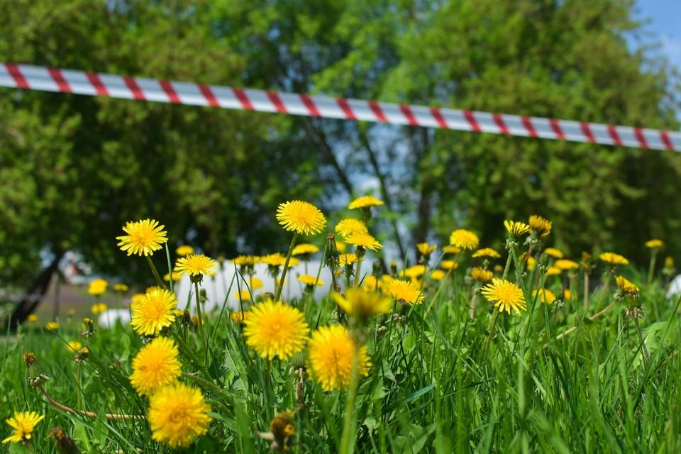 В мае будут продлены коронавирусные ограничения.