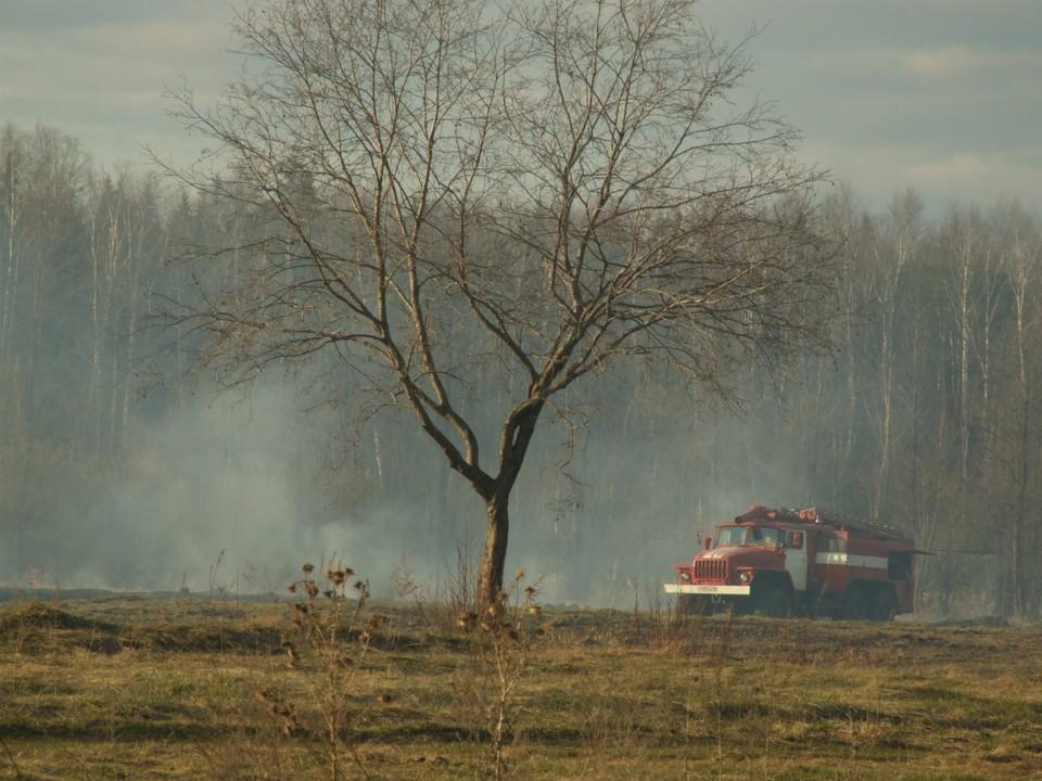 Из-за ветра пожары быстро распространяются