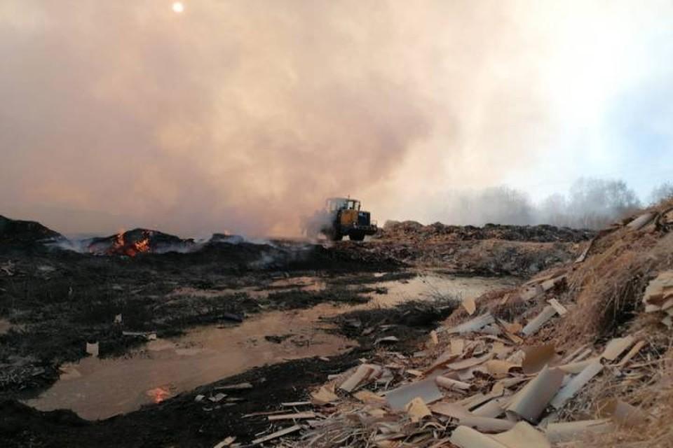 В Котельниче из-за неправильной утилизации отходов древесины китайским предприятием, жители соседних деревень страдают от запаха гари. Фото: onf.ru