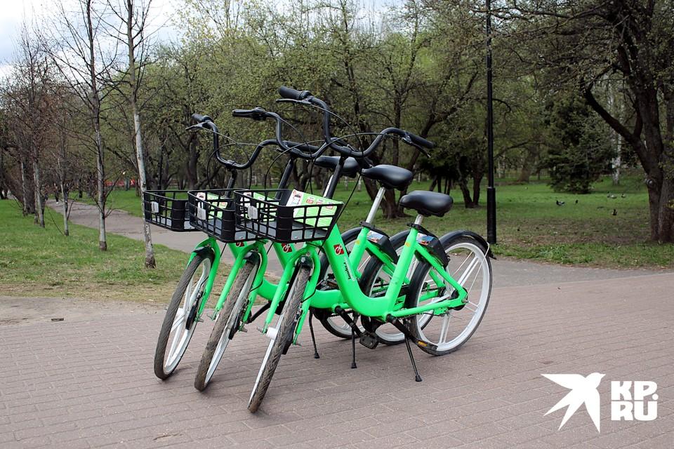 В Твери стартовал велошеринг – аренда зелёных велосипедов через приложение.
