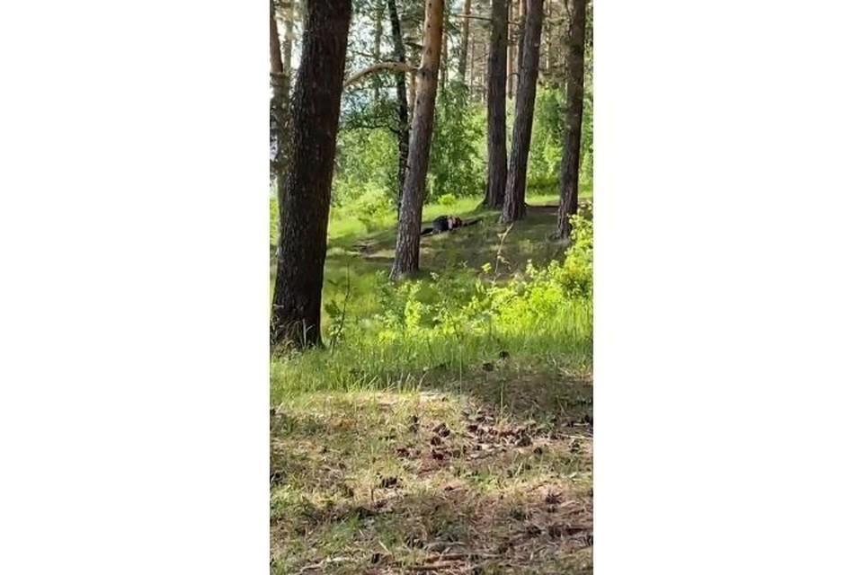 Пара занялась любовью в лесу в парке Кирова Фото: /vk.com/zlou18