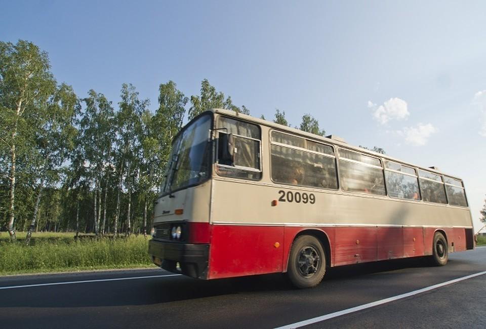На 44 маршрутах будут работать автобусы трех компаний