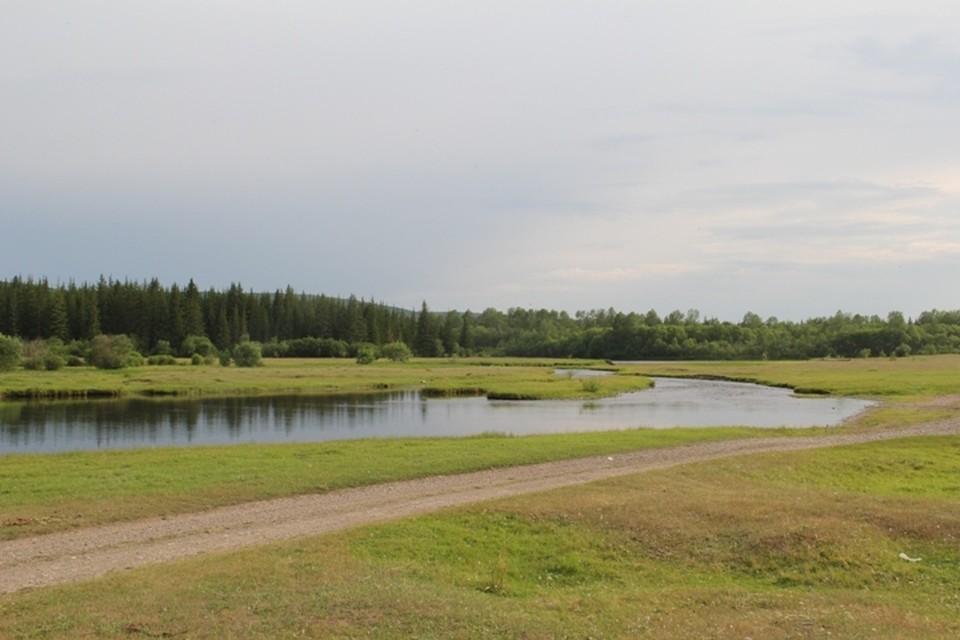 Уровень воды в реке в Тулуне снизился на 29 см за ночь