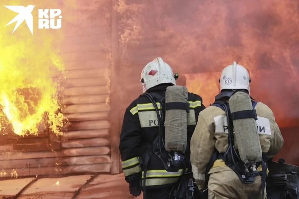 В Тверской области на пожаре погибла 74-летняя женщина.