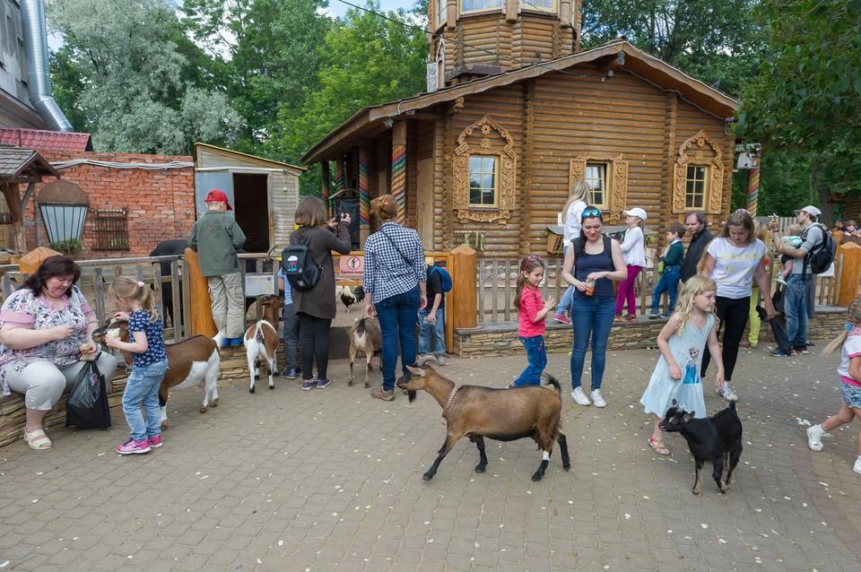 1 июня детей в зоопарк пустят бесплатно.