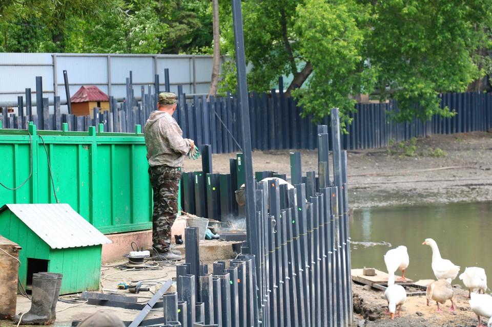 Вокруг пруда в зоопарке появится набережная
