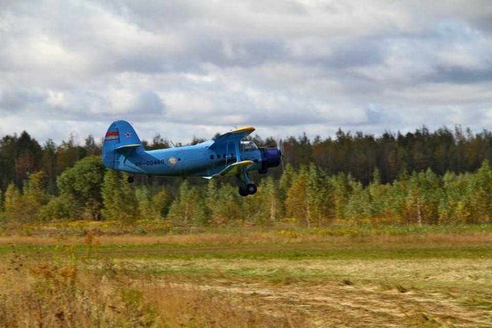 На аэродроме «Южный» пройдет фестиваль «Рыбинское небо». ФОТО: администрация Рыбинска