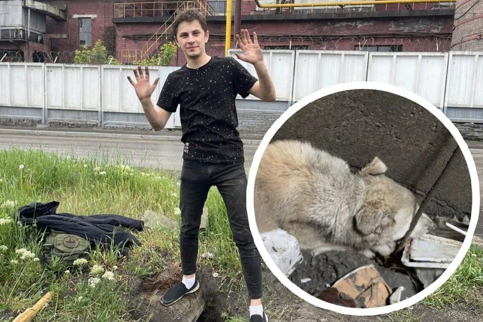 Щенок упал в колодец. Фото: предоставлено Евгением Кочкиным/стоп-кадр из видео.
