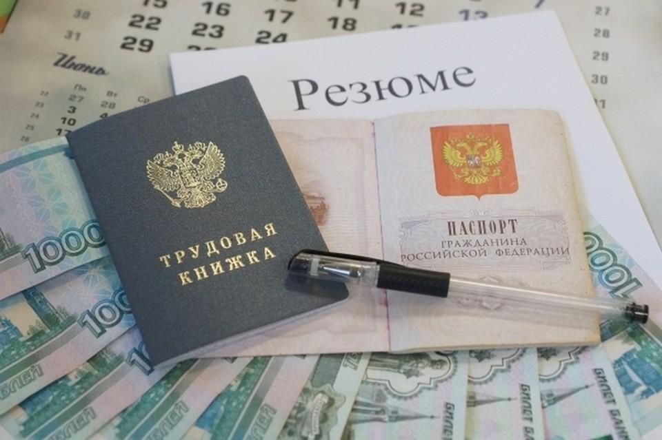 Сфера «Наука, образование» лидирует по количеству резюме, где требуется грамотный русский язык.