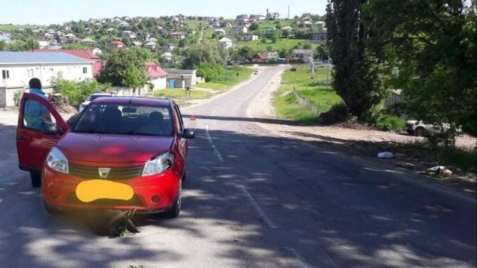 Автомобиль сбил пенсионера насмерть (Фото: полиция).