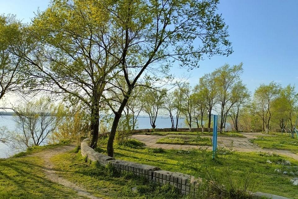 Погода 9 июня: в Хабаровске днем будет +31 градус жары