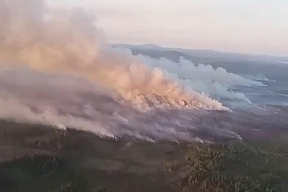 Ранее в минприроде сообщали, что все последние лесные пожары на Кольском полуострове возникали из-за людей. И тот, что случился в Зашейковском лесничестве, не исключение. Фото: Скриншот видео