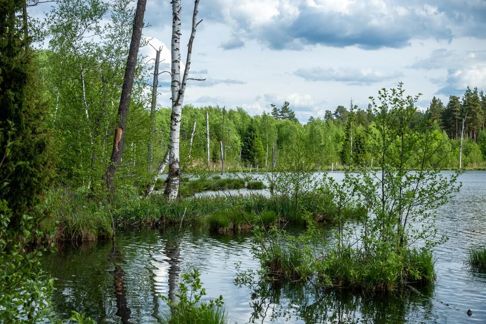 В Новокузнецке водолазы ищут пропавшего мужчину в озере.
