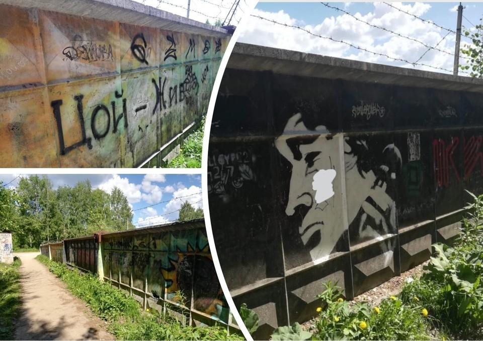 Фото: vk.com/arteev_sv