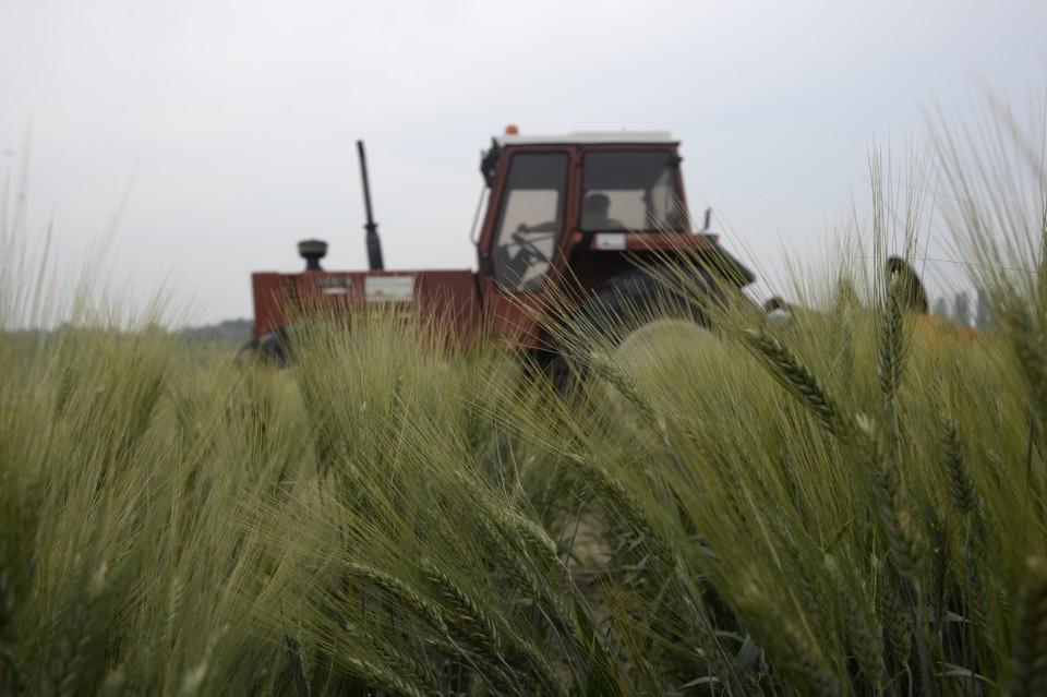 Спрос на работников в области земледелия вырос в 4 раза
