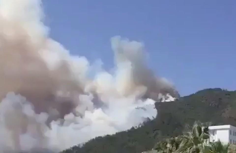 Огонь вспыхнул утром в воскресенье, 27 июня. Фото: скриншот видео.