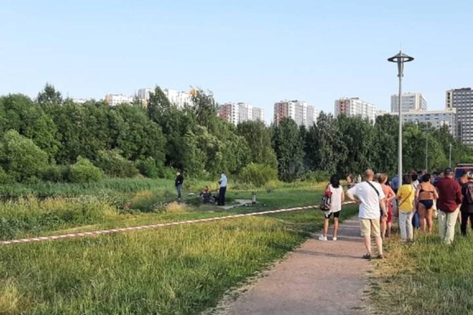 Тело ребенка извлекли из пруда в Пулковском парке