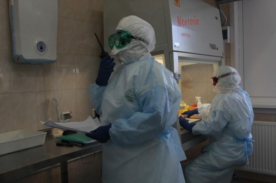 В Ростовской области коронавирусом заразились еще 296 человек