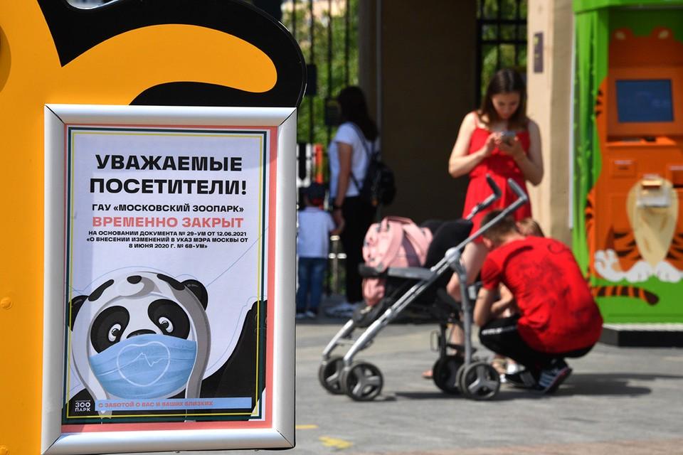 В июне Московский зоопарк закрыли из-за роста заболеваемости ковидом.