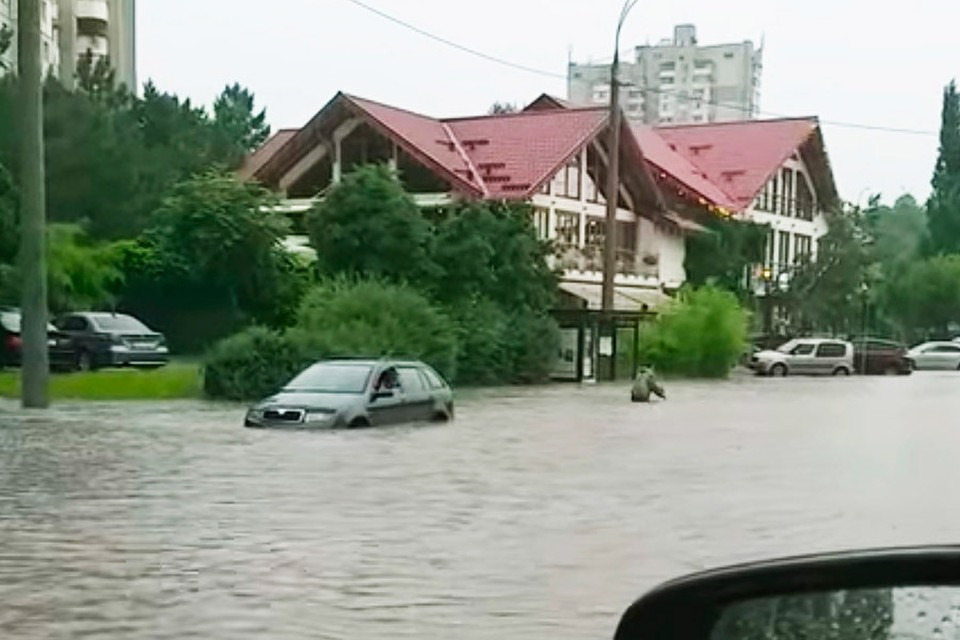 Одним из решений проблемы наводнений, происходящих на улице Албишоара, могло бы стать углубление реки Бык. Фото: ionceban.md
