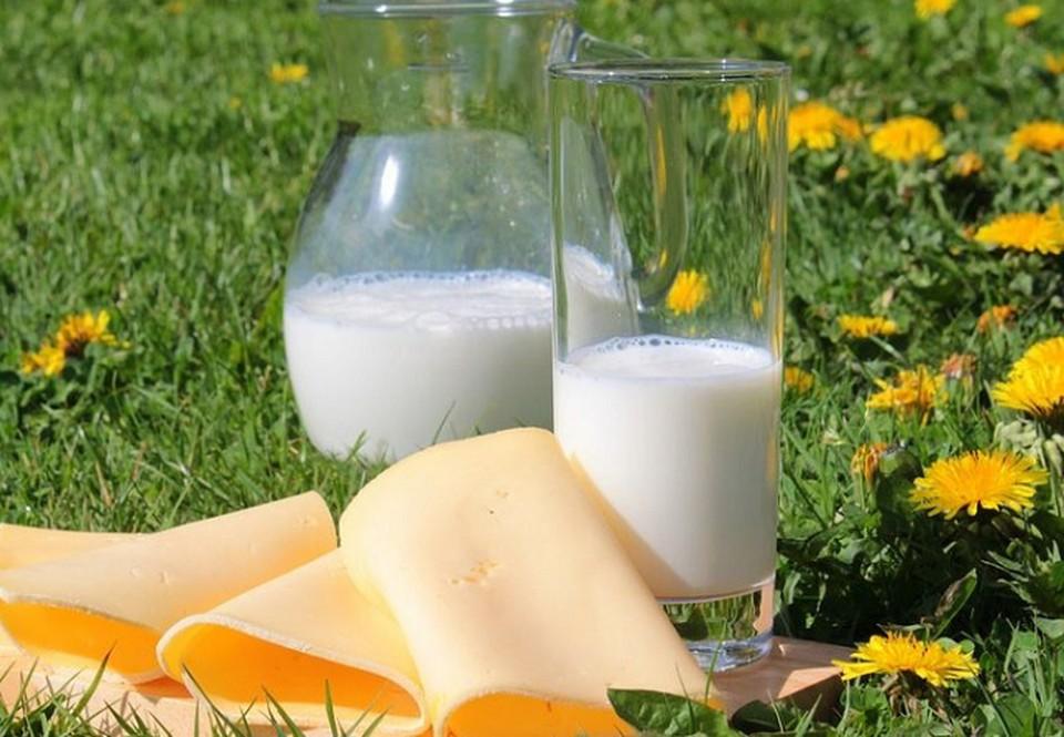 Молоко важно производить без нарушений технологии и правильно хранить. На этикетках также не должно быть недостоверной информации.