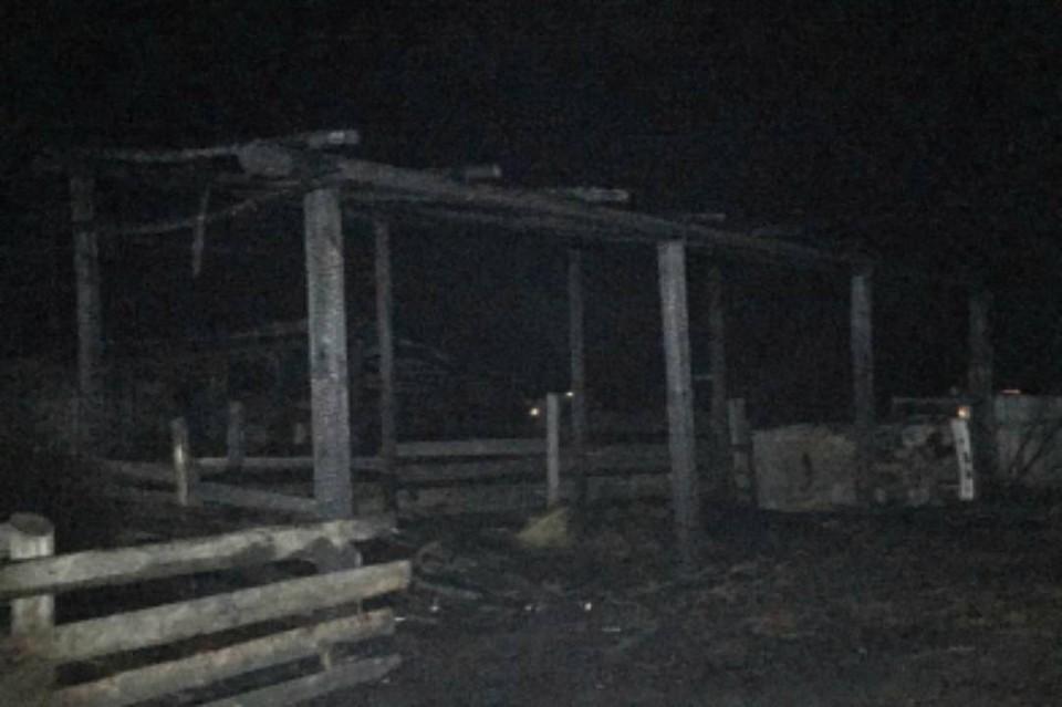 9-летняя девочка играла со спичками и сожгла соседский сарай в Тулунском районе