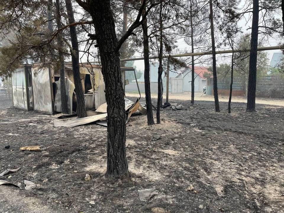 Вот так выглядит после пожара Джабык. Фото: Ксения Короленко