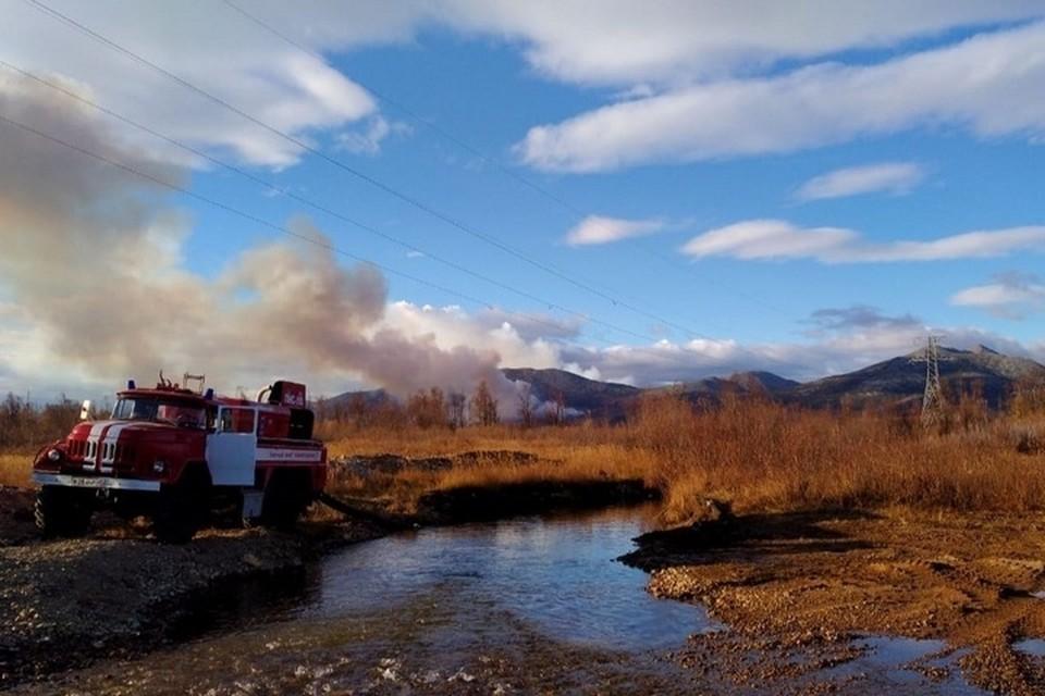 По данным на 12 июля, в регионе бушуют 50 возгораний