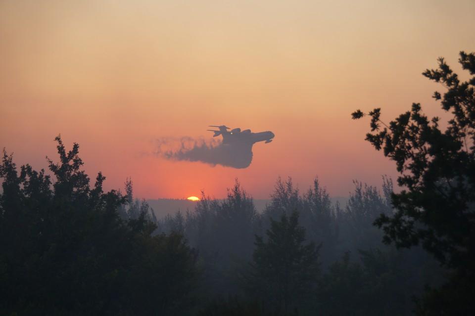 В Тольятти планируют повысить пожарную безопасность лесов. Фото - ГУ МЧС России по Самарской области