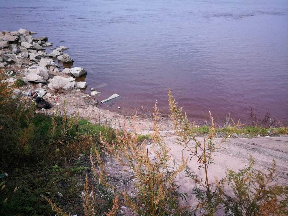 Волонтеры Хабаровского края очистили 10 километров береговой линии