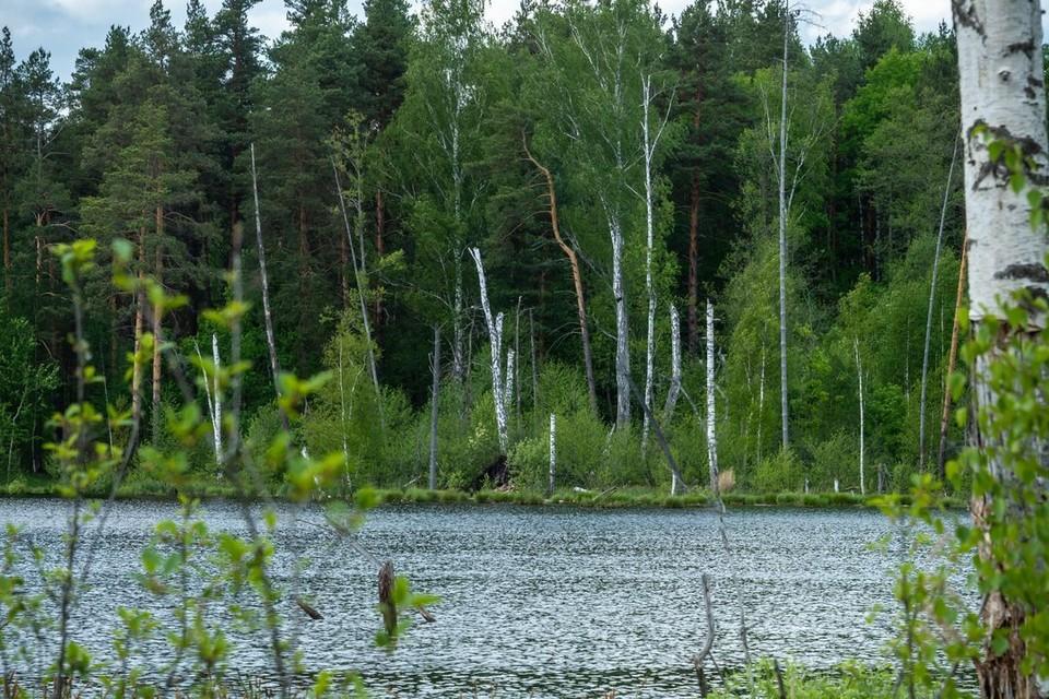 Под Новосибирском в реке нашли избитого мужчину.