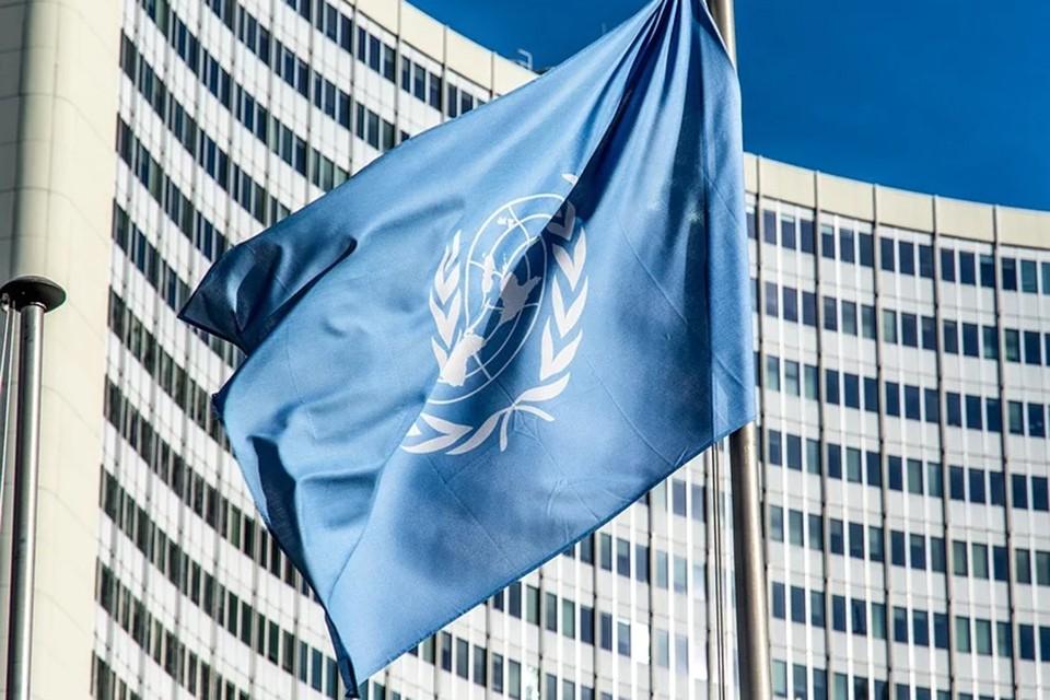 Совет по правам человека ООН на 47-й сессии одобрил резолюцию «Ситуация с правами человека в Беларуси». Фото: pixabay
