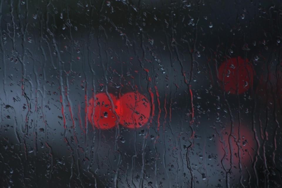 Дождливая погода будет почти по всему Казахстану